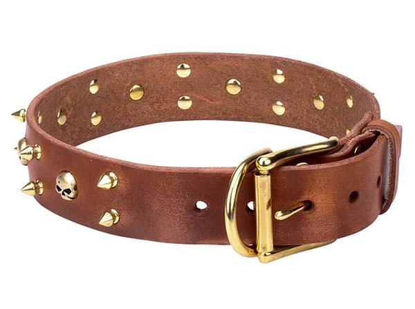 Traditional Dog Collars